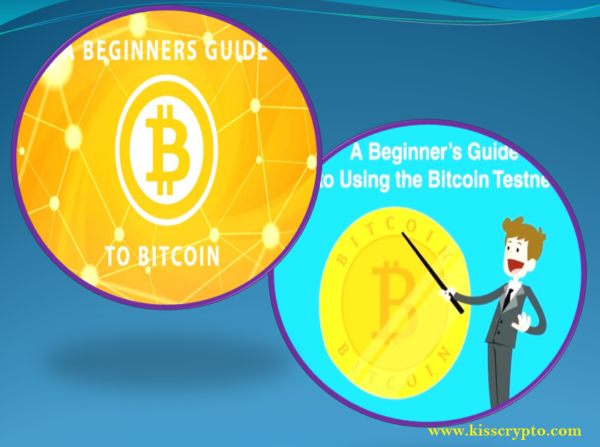 beginner's guide for owning Bitcoins