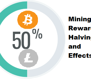 What Is Reward Halving and Its Effects