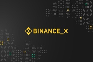 Binance X a solution for developers