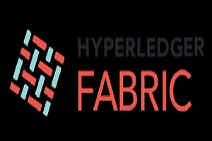 Hyperledger Fabric Releases 2.0 Version