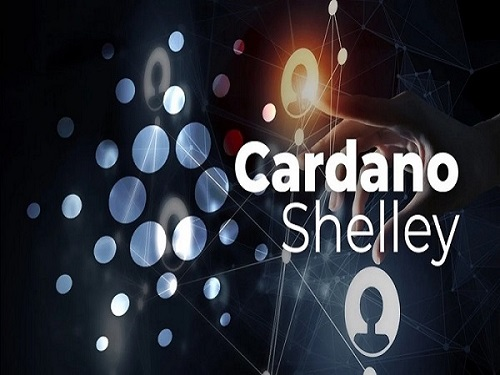 Cardano Launches Shelley Mainnet, Offers Staking Rewards to All