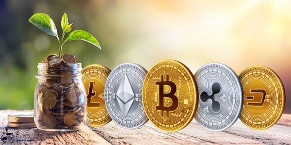 Hawaii U.S Authorizes 12 Crypto Exchanges With New Regulatory Sandbox