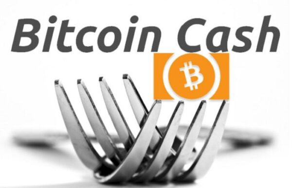 BCH Hardfork: Why Had Split Happened?